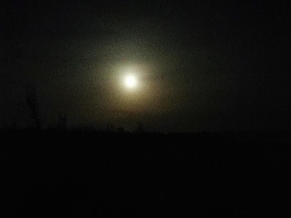 当晚的月亮并不明亮,所以路看得不清楚